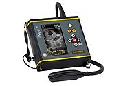 portable, diagnostic par imagerie, examen par ultrasons, examen de vaches, examen de chevaux