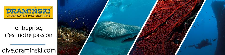 Les paysages sous-marins magnifiques vues à travers le prisme de propriétaire de l'entreprise DRAMINSKI. Vérifiez!