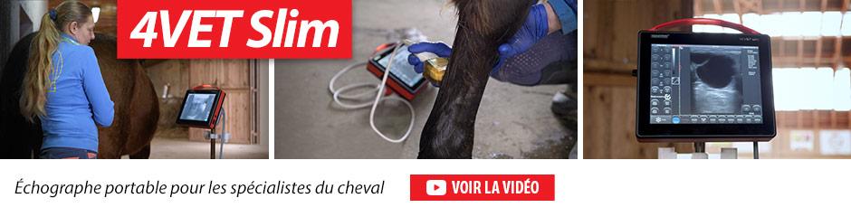 4VET Slim Échographe portable pour les spécialistes du cheval